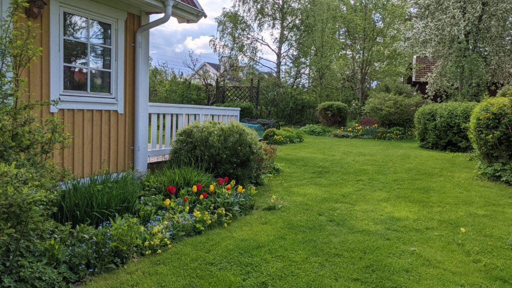 Villaträdgård